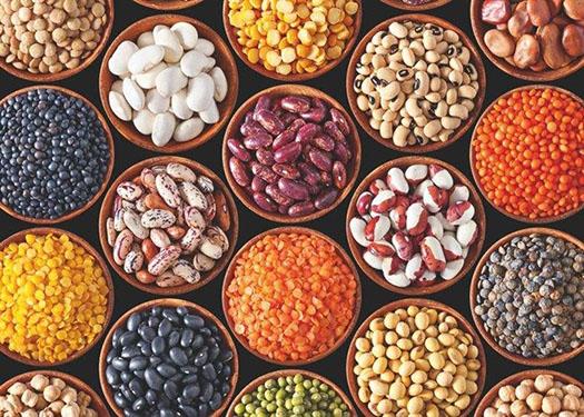 植物性饮食可能会改变肠道细菌 以保护心脏健康